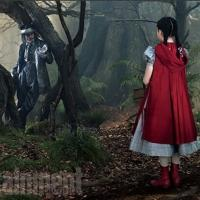Photo Flash: The Way Is Clear - More Stunning Images from INTO THE WOODS! Photos