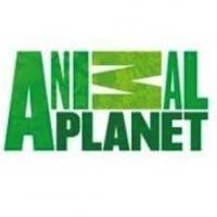 Animal Planet's FINDING BIGFOOT Returns 11/9