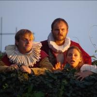 BWW Reviews: TWELFTH NIGHT, The Castle, Harrow and The Rose, Bankside