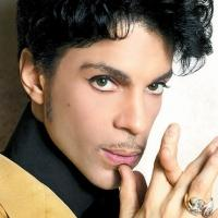 Music Icon Prince to Play Himself on FOX's NEW GIRL