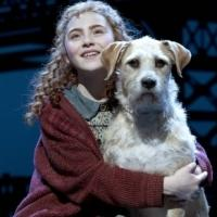 Tony-Nominated ANNIE to Launch Tour in 2014-15!