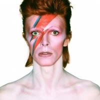 Photo Flash: First Look at DAVID BOWIE IS Exhibit at the Museum of Contemporary Art in Chicago