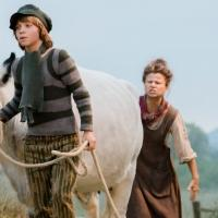 INTO THE WOODS' Tracey Ullman on Working with Kids and Animals: 'Best Experience I've Ever Had'