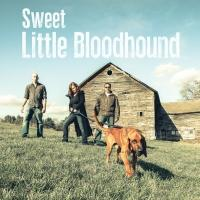 Soulful Rock Band Sweet Little Bloodhound Releases Self-Titled Album
