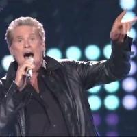 VIDEO: David Hasselhoff Knocks '80s Medley Out of the Park on AMERICAN IDOL