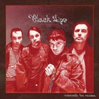 Black Lips Announce US Tour, Unveil Cover Art for New Album