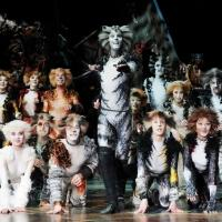 CATS is Officially Aiming for Broadway Return in 2016; Fall or Spring?