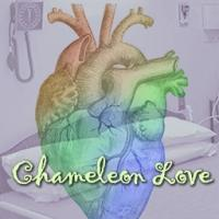 BWW Reviews: CHAMELEON LOVE Captivates Brookings