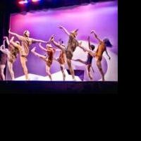 BWW Reviews: BARK IN THE PARK Treats Young Audiences to Ballet