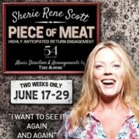 Sherie Rene Scott's ALL WILL BE WELL: THE PIECE OF MEAT Studio Sessions Now Out