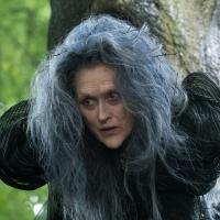Meryl Streep Sings 'Children Will Listen' & Talks INTO THE WOODS