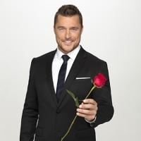 ABC's THE BACHELOR Beats 'Apprentice' in Total Viewers