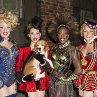 Photo Coverage: Westminster Best in Show Winner Miss P. Makes Broadway Debut in KINKY BOOTS!