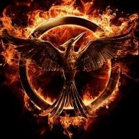 More HUNGER GAMES Movies Past Collins's Trilogy in the Works?