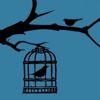 Premiere Reading of BLUEBIRDS by Joe Brondo Set for John Drew Theater Tonight