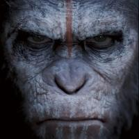 PLANET OF THE APES 3 Set for July 2016 Release