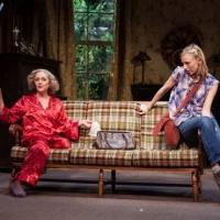 Photo Flash: First Look at Carol Kane & Mickey Sumner in THE LYING LESSON