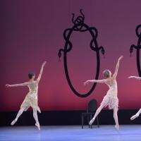 BWW Reviews: Tom Gold Dance Company