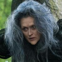 BWW Profile: Meryl Streep Oscar Nominated Star of Stage and Screen