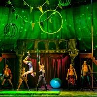 BWW Reviews: Magical PIPPIN Almost Finds Its 'Corner of the Sky,' at the Connor Palace