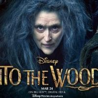 INTO THE WOODS Continues Global Box Office Success; Debuts in Japan at $3.5M
