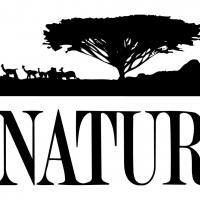 THIRTEEN's Nature Presents 'The Last Orangutan Eden' on PBS Tonight