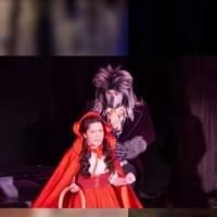 STAGE TUBE: First Look at Press Preview of INTO THE WOODS at the Arsht Center