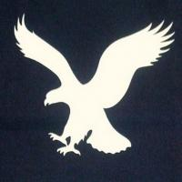 American Eagle Outfitters Names Interim CEO