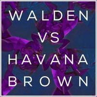 Walden Releases 'No Ordinary Love' (Feat. Havana Brown) Remix EP - Out Now via Big Beat