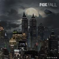 BREAKING: FOX Announces Fall 2014 Schedule and New Portfolio of Content