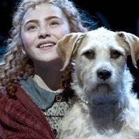 THIRTEEN to Bring Broadway's ANNIE to NYC Classrooms as Part of Education Initiative