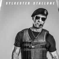 Photo Flash: Stallone, Schwarzenegger & More in New EXPENDABLES 3 Posters