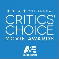 BIRDMAN and BOYHOOD Top 2015 Critics' Choice Movie Awards; All the Winners!