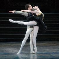 BWW Reviews: American Ballet Theatre's SWAN LAKE Offers Delights and Disappointments