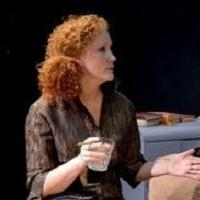 BWW Reviews: WHO'S AFRAID OF VIRGINIA WOOLF Spars Three Riveting Rounds at Theatre Harrisburg