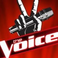 Quotables from THE VOICE, 5/8