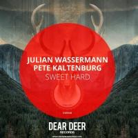 ulian Wasserman & Pete Kaltenburg Present 'Sweet Hard'