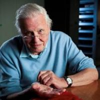 David Attenborough's RISE OF ANIMALS Premieres on Smithsonian Channel Tonight
