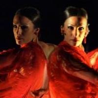 Flamenco Vivo Carlota Santana's Spring 2015 NYC Season at BAM Fisher Set for 5/19-24