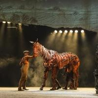 BWW Interviews: Michael Wyatt Cox of WAR HORSE