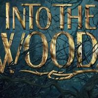 BWW TV Watch Live: All the Stars of the INTO THE WOODS MOVIE Participate in Livestream Q&A at 9:30PM EST, 6:30PM PST - Right Here!