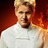 Meet the Four Remaining Chefs on FOX's HELL'S KITCHEN