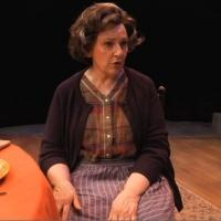 BWW TV: First Look at Highlights of MIRACLE ON SOUTH DIVISION STREET at Theatre at the Center