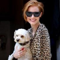 Jessica Chastain's Pooch Makes Broadway Debut!