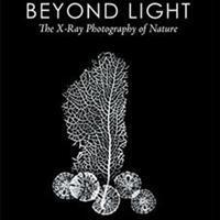 Albert Koetsier Shares X-Rays of Nature in New Book