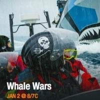 Animal Planet to Premiere Three-Hour Event WHALE WARS, 1/2