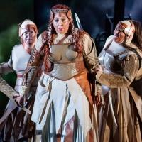 BWW Reviews: DIE WALKÜRE at Houston Grand Opera, Wunderbar