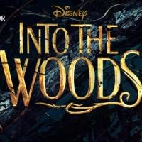 Brand New INTO THE WOODS TV Spot
