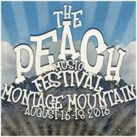 ALLMAN BROTHERS BAND Set for Peach Music Festival, Now thru 8/18