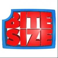 BiteSizeTV Debuts New Studio and Website Live from Hollywood